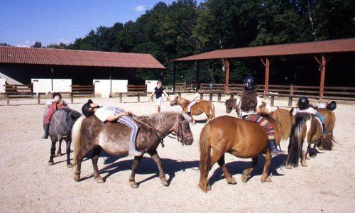 enfants et poneys